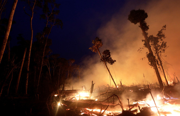Rừng Amazon góp 20% khí oxy cho Trái đất, có đúng không? - Ảnh 1.
