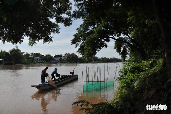 Lũ Campuchia cao nhưng khó ảnh hưởng đến Đồng bằng sông Cửu Long - Ảnh 1.