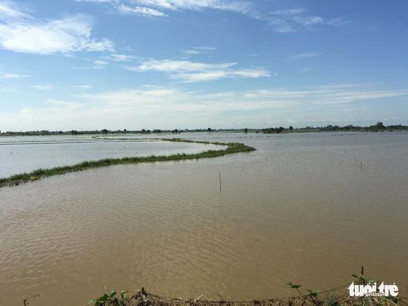 Lũ Campuchia cao nhưng khó ảnh hưởng đến Đồng bằng sông Cửu Long - Ảnh 2.