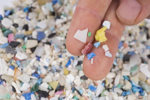 73.000 mảnh nhựa đi vào cơ thể người mỗi năm - Ảnh 1.