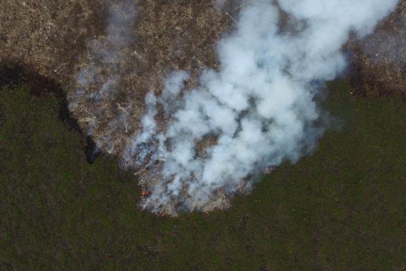 Mưa nhân tạo giúp Indonesia giảm được 90% số vụ cháy rừng - Ảnh 1.