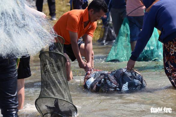 Thủy điện Trị An ngưng xả tràn, ngàn người tranh nhau bắt cá dưới chân đập - Ảnh 7.