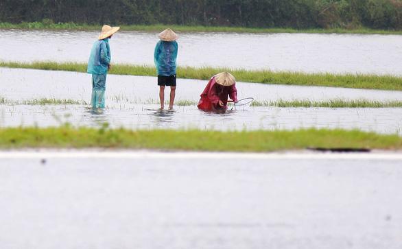 Thả lưới, 2 người dân bị nước lũ cuốn chết - Ảnh 1.