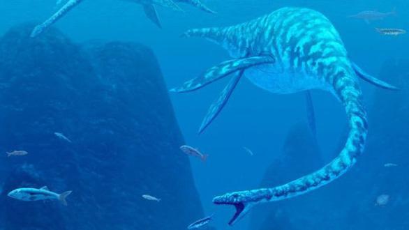 Quái vật Hồ Loch Ness là một con lươn khổng ồ? - Ảnh 2.