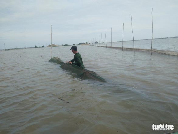 Nước thượng nguồn Mekong lên nhanh, mực nước ĐBSCL vẫn dưới báo động 1 - Ảnh 1.