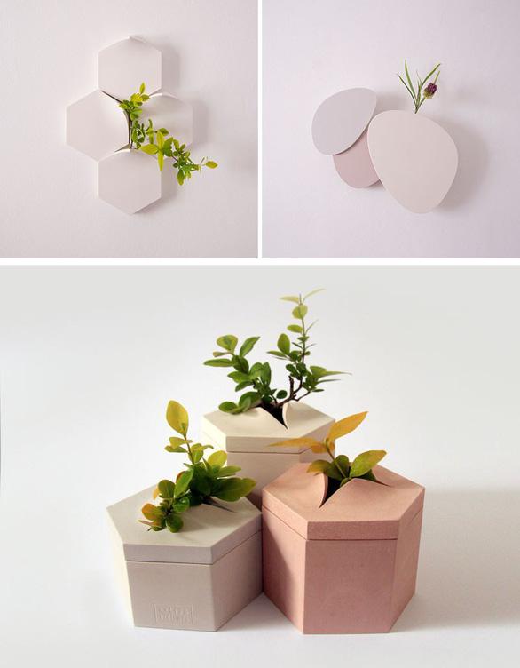 Nhà thêm cá tính với bình hoa gắn tường độc đáo - Ảnh 2.