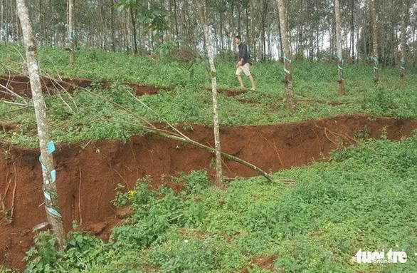 Lở đất gần hồ thải quặng Alumin Nhân Cơ một phần do mương dẫn nước - Ảnh 2.