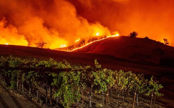 Chúng ta giờ đây phải chung sống với cháy rừng tàn khốc - Ảnh 2.