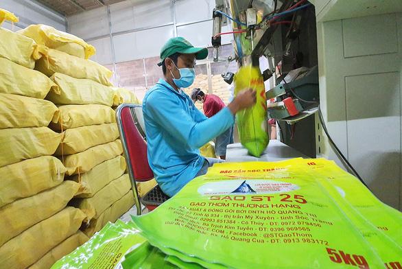 Bộ Nông nghiệp đặc cách công nhận giống lúa thơm ST25 - gạo ngon nhất thế giới - Ảnh 1.