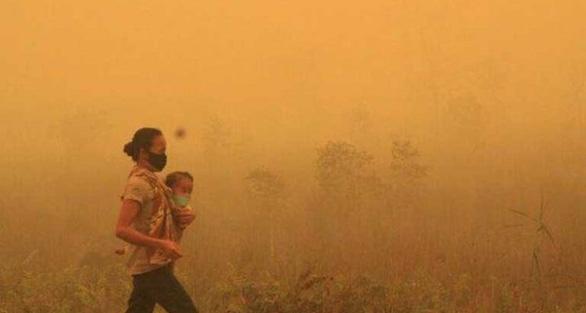 Chúng ta giờ đây phải chung sống với cháy rừng tàn khốc - Ảnh 4.