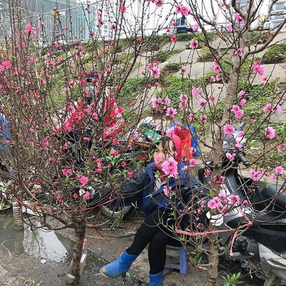 Một vòng chợ hoa tết Quảng Bá - Ảnh 2.
