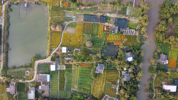 Từ flycam, làng hoa cạnh lò gạch cũ ở Cái Mơn đẹp ngẩn ngơ - Ảnh 3.