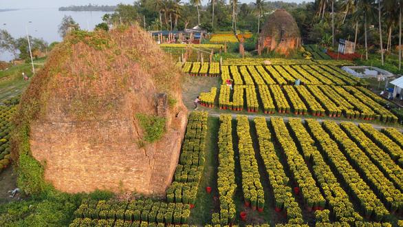 Từ flycam, làng hoa cạnh lò gạch cũ ở Cái Mơn đẹp ngẩn ngơ - Ảnh 4.