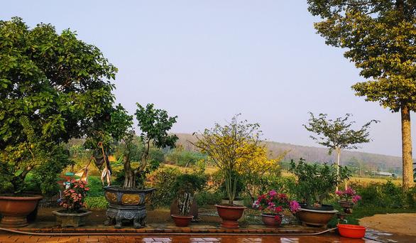 10 năm ở trọ Sài Gòn, lịch tết của tôi không thay đổi: về với vườn rau của mẹ - Ảnh 3.
