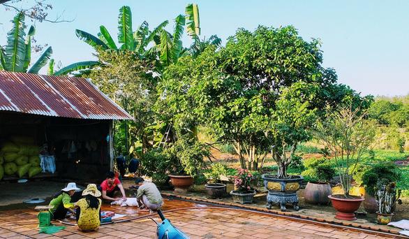 10 năm ở trọ Sài Gòn, lịch tết của tôi không thay đổi: về với vườn rau của mẹ - Ảnh 1.