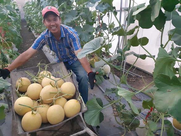 Những nhà nông trẻ bung hàng vụ tết - Ảnh 2.