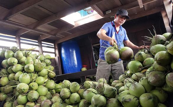 Chợ quê Sài Gòn - Kỳ 3: Thương lắm con khô sặc rằn - Ảnh 1.