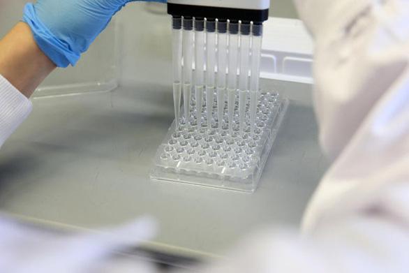 WHO cảnh báo thiếu hụt kháng sinh mới chống siêu vi khuẩn - Ảnh 1.