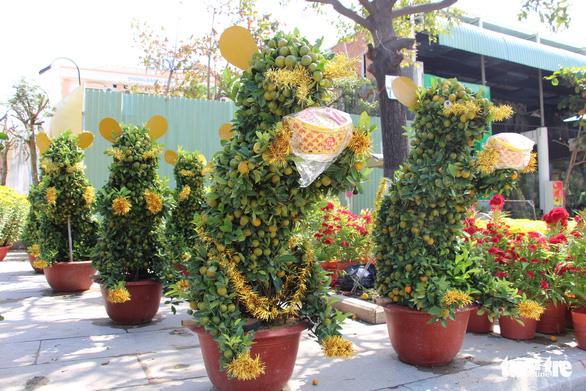 Quất bonsai tạo hình chuột đắt như tôm tươi - Ảnh 4.