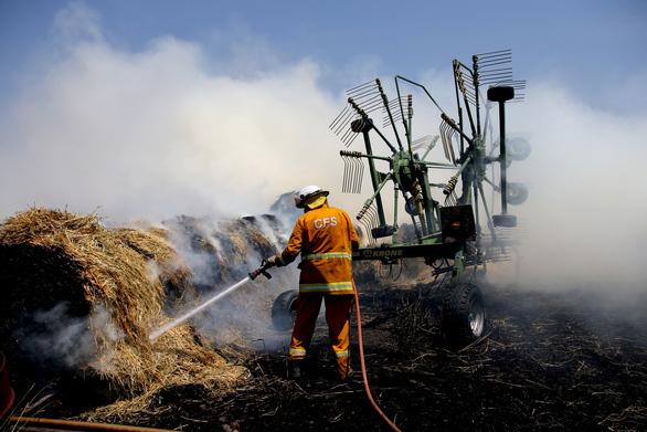 Cháy rừng quá lớn gần mùa du lịch, Úc lo du khách hủy tour - Ảnh 1.