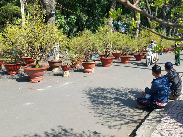 Sợ ngậm hàng, nhiều nhà vườn bắt đầu giảm giá hoa - Ảnh 3.