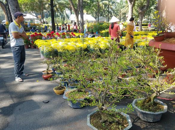 Sợ ngậm hàng, nhiều nhà vườn bắt đầu giảm giá hoa - Ảnh 6.