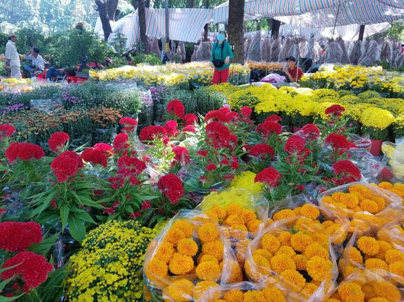 Sợ ngậm hàng, nhiều nhà vườn bắt đầu giảm giá hoa - Ảnh 10.