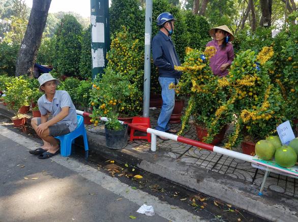 Sợ ngậm hàng, nhiều nhà vườn bắt đầu giảm giá hoa - Ảnh 12.