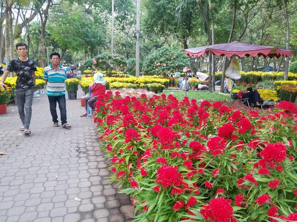 Sợ ngậm hàng, nhiều nhà vườn bắt đầu giảm giá hoa - Ảnh 2.