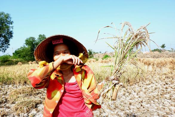 Gặt lúa giữa đồng trưa 27 tết, vợ chồng già cười tặng cả mùa xuân - Ảnh 6.