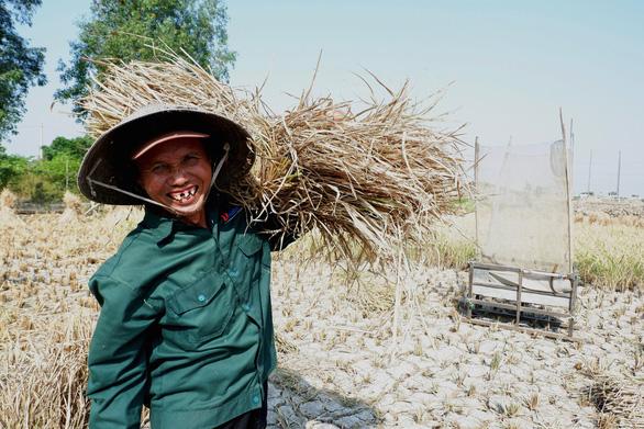 Gặt lúa giữa đồng trưa 27 tết, vợ chồng già cười tặng cả mùa xuân - Ảnh 5.