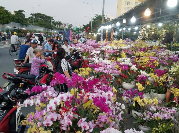 Cận tết, dân Sài Gòn rủ nhau đi săn lan hồ điệp đến khuya - Ảnh 1.