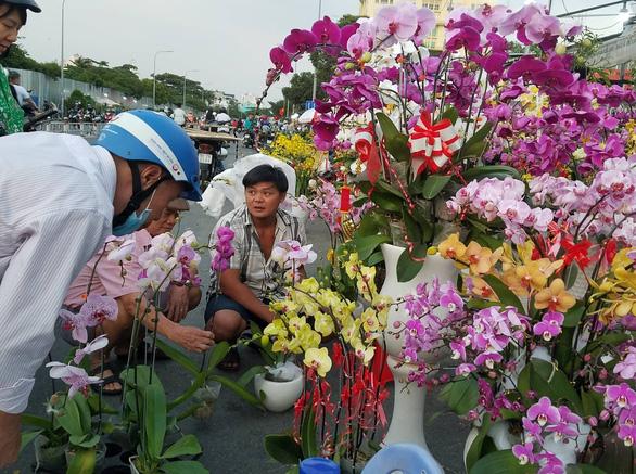 Cận tết, dân Sài Gòn rủ nhau đi săn lan hồ điệp đến khuya - Ảnh 2.