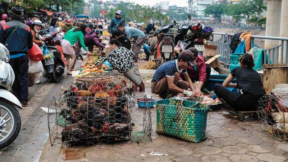Người Hà Nội chen chân trong phiên chợ cuối cùng của năm - Ảnh 5.