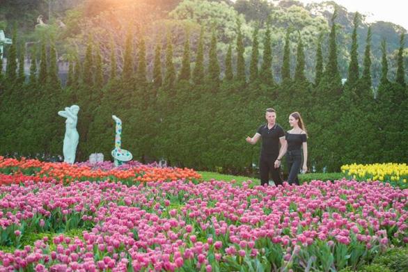 """Bắt trọn mùa hoa tulip đẹp """"rụng tim"""" ở Bà Nà Hills - Ảnh 11."""