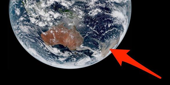 Những hình ảnh cay mắt trong thảm họa cháy rừng ở Úc - Ảnh 1.