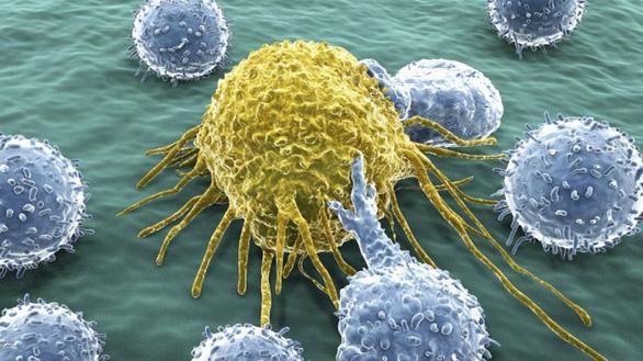 Kỳ tích y học: Truyền hệ miễn dịch của anh cho em trai để cứu em - Ảnh 3.