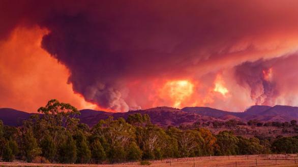 Úc tuyên bố tình trạng khẩn cấp nguy cơ cháy rừng ngay ở thủ đô - Ảnh 1.
