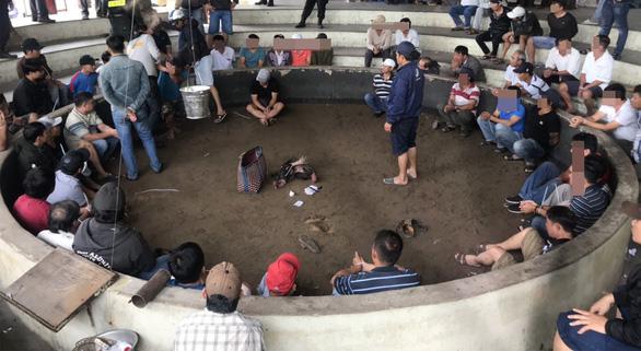 Tạm giam 13 người đá gà ăn tiền giữa trung tâm TP Tuy Hòa, Phú Yên - Ảnh 1.