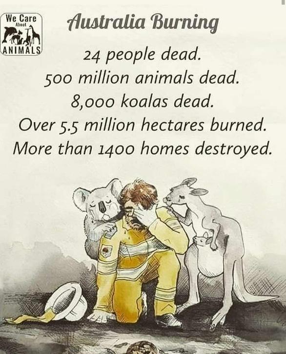 Thế giới cầu nguyện cho nước Úc vượt qua trận cháy rừng thảm khốc - Ảnh 1.