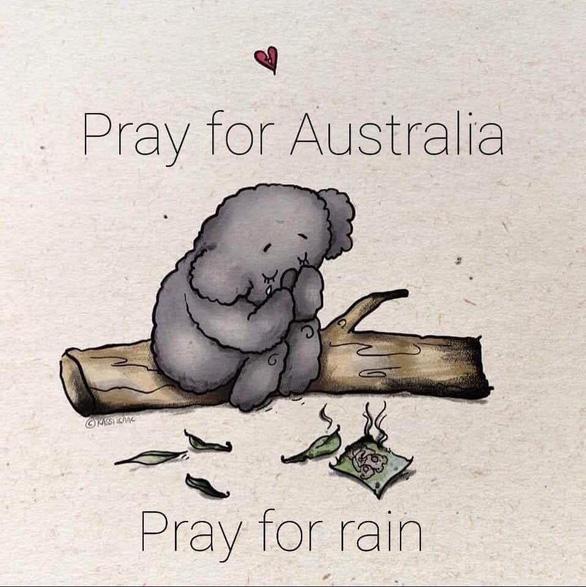 Thế giới cầu nguyện cho nước Úc vượt qua trận cháy rừng thảm khốc - Ảnh 4.