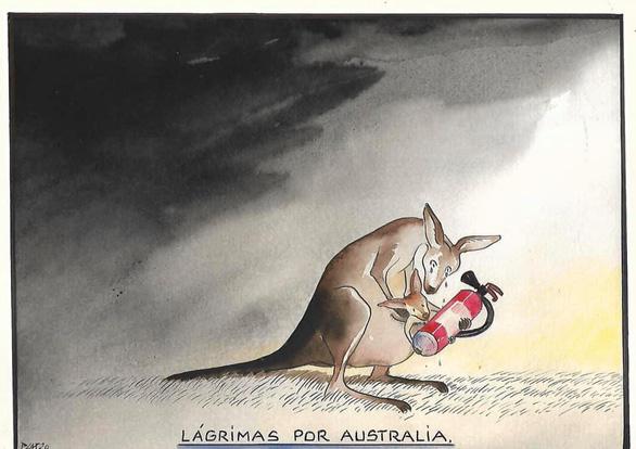 Thế giới cầu nguyện cho nước Úc vượt qua trận cháy rừng thảm khốc - Ảnh 5.
