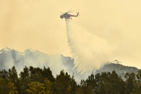 Úc đón mưa vàng, cháy rừng thuyên giảm - Ảnh 1.