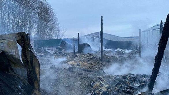 Cán bộ ĐSQ Việt Nam đến hiện trường vụ cháy ở Nga, nghi cả 8 nạn nhân là người Việt - Ảnh 1.