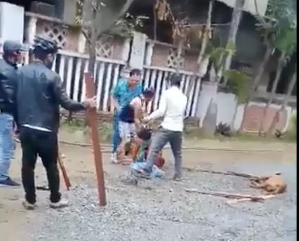 Kinh hoàng cảnh chó pitbull tấn công làm một bà cụ dập nát cánh tay - Ảnh 1.