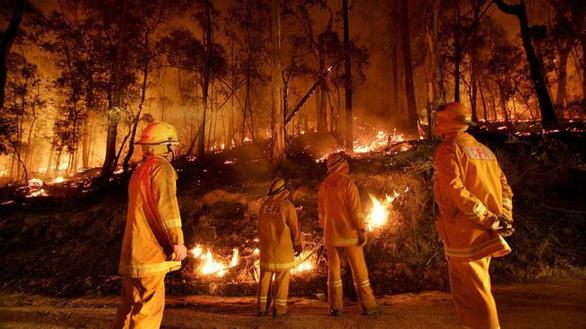 Cháy rừng ở Úc thải 370 triệu tấn khí carbon, ngang cháy rừng Amazon - Ảnh 1.