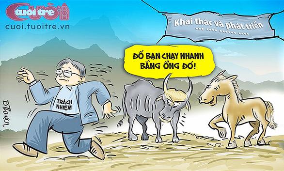 Đàn bò tót lai và tiền ngân sách - Ảnh 1.