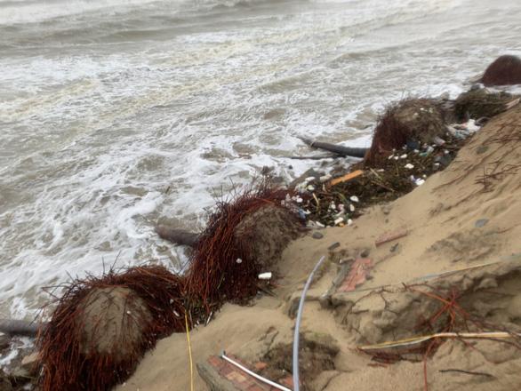 Bờ biển Hội An lại nát tan sau bão - Ảnh 7.