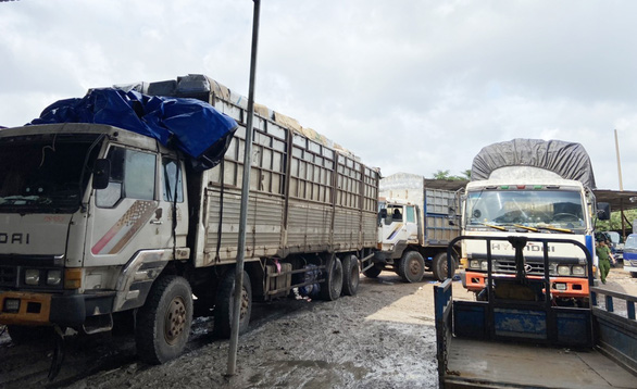 Tạm giữ hơn 1.000 thiết bị điện tử, điện lạnh từ biên giới Campuchia về TP.HCM - Ảnh 1.