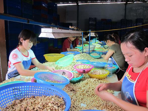 Việt Nam nhập siêu trên 173 triệu USD từ... Nigeria - Ảnh 1.